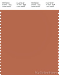 PANTONE SMART 17-1347X Color Swatch Card, Autumn Leaf