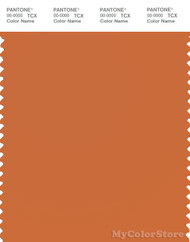 PANTONE SMART 17-1353X Color Swatch Card, Apricot Orange