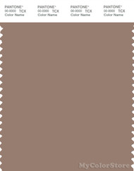 PANTONE SMART 17-1418X Color Swatch Card, Ginger Snap