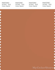 PANTONE SMART 17-1436X Color Swatch Card, Raw Sienna