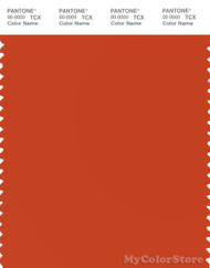 PANTONE SMART 17-1449X Color Swatch Card, Pureed Pumpkin
