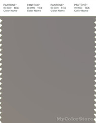 PANTONE SMART 17-1502X Color Swatch Card, Medium Gray