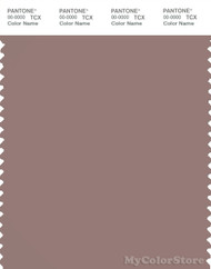 PANTONE SMART 17-1510X Color Swatch Card, Antler