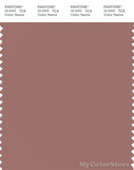 PANTONE SMART 17-1516X Color Swatch Card, Burlwood