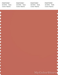 PANTONE SMART 17-1540X Color Swatch Card, Apricot Brandy