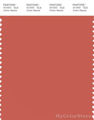 PANTONE SMART 17-1544X Color Swatch Card, Burnt Sienna