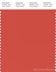 PANTONE SMART 17-1553X Color Swatch Card, Paprika