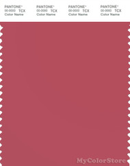 PANTONE SMART 17-1633X Color Swatch Card, Holly Berry