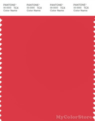 PANTONE SMART 17-1663X Color Swatch Card, Bittersweet