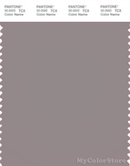 PANTONE SMART 17-2601X Color Swatch Card, Zinc