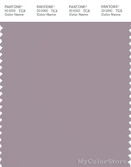 PANTONE SMART 17-3808X Color Swatch Card, Nirvana