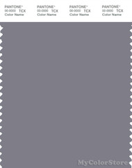 PANTONE SMART 17-3907X Color Swatch Card, Quicksilver