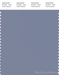PANTONE SMART 17-3915X Color Swatch Card, Tempest