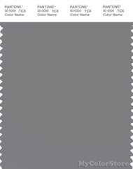 PANTONE SMART 17-4014X Color Swatch Card, Titanium