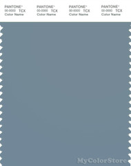 PANTONE SMART 17-4111X Color Swatch Card, Cadet Gray