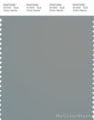 PANTONE SMART 17-4402X Color Swatch Card, Neutral Gray