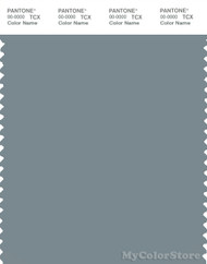 PANTONE SMART 17-4408X Color Swatch Card, Lead