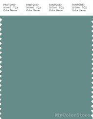 PANTONE SMART 17-5111X Color Swatch Card, Oil Blue