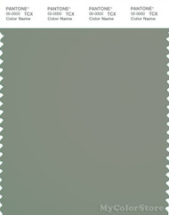 PANTONE SMART 17-6206X Color Swatch Card, Shadow