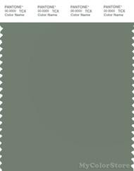 PANTONE SMART 17-6212X Color Swatch Card, Sea Spray