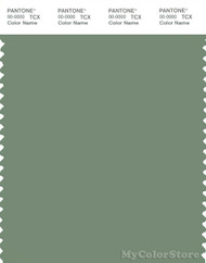 PANTONE SMART 17-6323X Color Swatch Card, Hedge Green