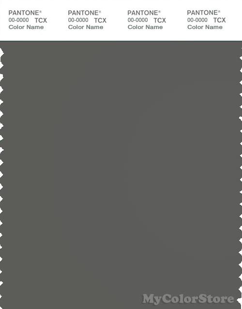 PANTONE SMART 18-0306X Color Swatch Card, Gunmetal