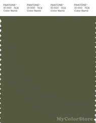 PANTONE SMART 18-0322X Color Swatch Card, Cypress
