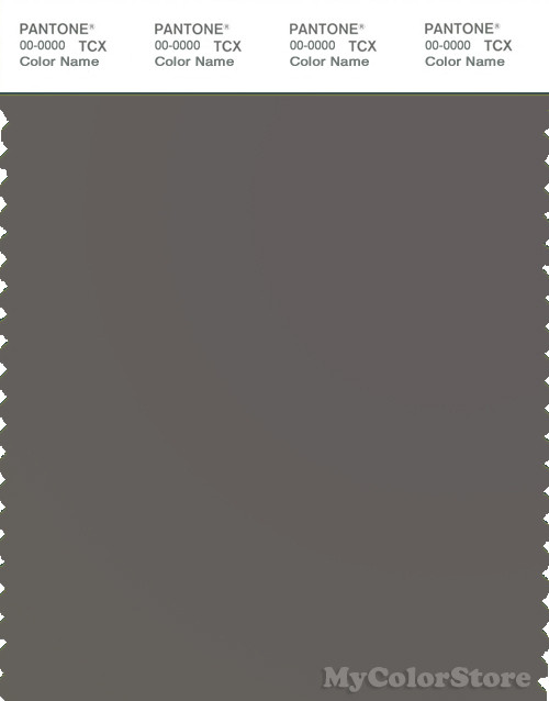 PANTONE SMART 18-0403X Color Swatch Card, Dark Gull Gray