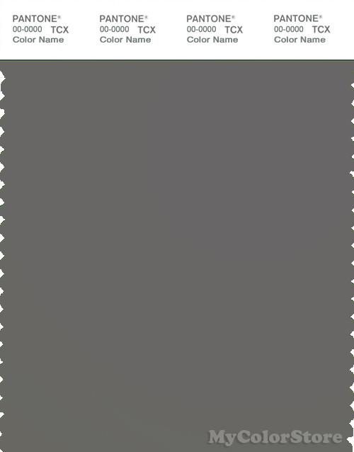 PANTONE SMART 18-0503X Color Swatch Card, Gargoyle