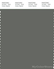 PANTONE SMART 18-0510X Color Swatch Card, Castor Gray