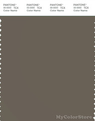 PANTONE SMART 18-0513X Color Swatch Card, Bungee Cord