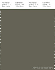 PANTONE SMART 18-0515X Color Swatch Card, Dusty Olive