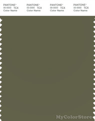 PANTONE SMART 18-0523X Color Swatch Card, Winter Moss