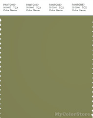 PANTONE SMART 18-0525X Color Swatch Card, Iguana