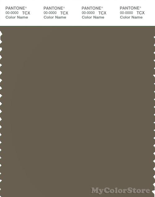 PANTONE SMART 18-0615X Color Swatch Card, Stone Gray