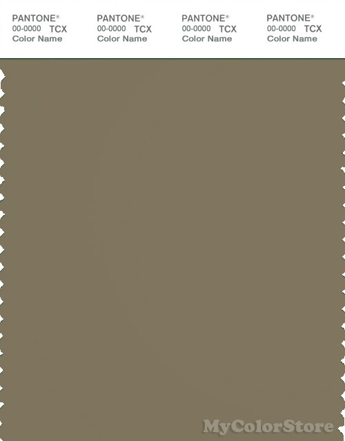 PANTONE SMART 18-0617X Color Swatch Card, Covert Green