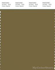 PANTONE SMART 18-0825X Color Swatch Card, Nutria