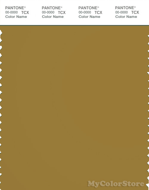 PANTONE SMART 18-0835X Color Swatch Card, Dried Tobacco
