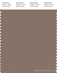 PANTONE SMART 18-1017X Color Swatch Card, Caribou