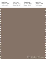 PANTONE SMART 18-1017X Color Swatch Card, Caribou