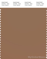 PANTONE SMART 18-1029X Color Swatch Card, Toasted Coconut