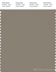 PANTONE SMART 18-1108X Color Swatch Card, Fallen Rock