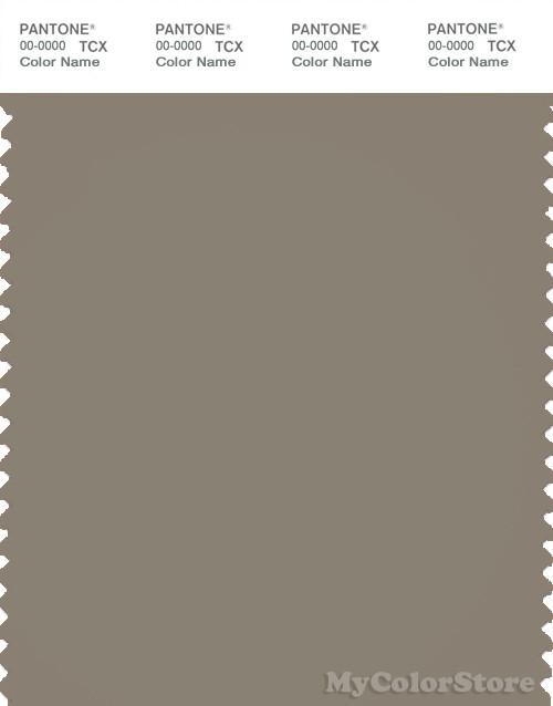 PANTONE SMART 18-1108X Color Swatch Card, Fallen Rock