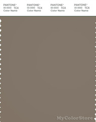 PANTONE SMART 18-1110X Color Swatch Card, Brindle