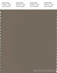 PANTONE SMART 18-1112X Color Swatch Card, Walnut