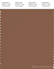 PANTONE SMART 18-1137X Color Swatch Card, Rawhide