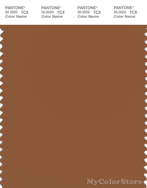 PANTONE SMART 18-1148X Color Swatch Card, Caramel Cafe
