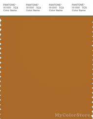 PANTONE SMART 18-1160X Color Swatch Card, Sudan Brown