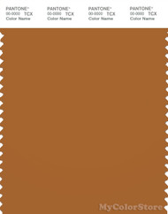 PANTONE SMART 18-1163X Color Swatch Card, Pumpkin Spice