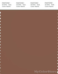 PANTONE SMART 18-1229X Color Swatch Card, Carob Brown